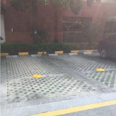 parking-lot-sensor-p00092p1-05